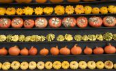 Five Rows Of Pumpkins
