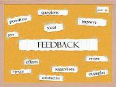 Feedback Corkboard Word Concept