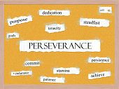 picture of pegboard  - Perseverance Corkboard Word Concept with great terms such as dedication steadfast tenacity and more - JPG