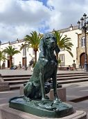 Dog Symbol Of Canary Islands