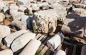 Ancient Roman Colon