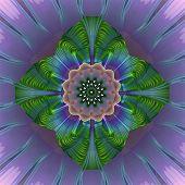 Rosette Fractral Purple Green