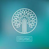 Organic Vector Abstract Emblem