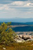 Landscape view from a Swedish mountain during summer