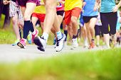 picture of competing  - Group of unidentified marathon racers running - JPG
