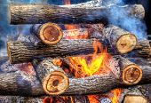 Closeup Of Hot Burning Firewood In A Campfire