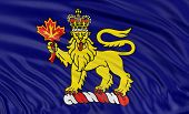 3D governor general flag of Canada
