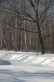 The Winter Park