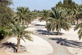 Park in the city Of Al Ain