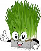 Illustration of a Block of Wheat Grass Giving a Thumbs Up