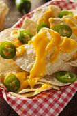 foto of jalapeno  - Homemade Nachos with Cheddar Cheese and Jalapenos - JPG