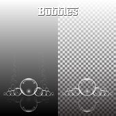 Group Of Transparent Bubbles Vector