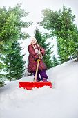 image of snow shovel  - Girl working with shovel and cleaning snow in winter during day among fir trees - JPG
