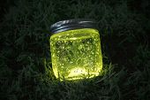 picture of fireflies  - Close blue light glowing jar on moss in the dark of the night - JPG