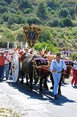 Bull cart procession, Marbella.