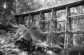 Old Noojee Trestle rail bridge.