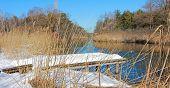 Moor Landscape With Birch Boardwalk In Winter