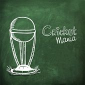 Creative winning trophy drawn by white chalk on chalkboard background for Cricket Mania.