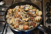 picture of clam  - Cooking some clams with wine and parsley in the pan - JPG