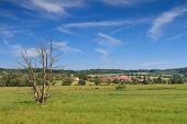 picture of wetland  - Wetland near Stockheim in the Wetterau Hessen Germany - JPG