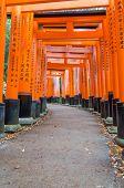 pic of inari  - Fushimi Inari shrine in Kyoto of Japan - JPG