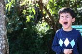 stock photo of crying boy  - Boy crying while standing up in park - JPG