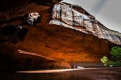 pic of colorado high country  - Hiker in Golden Cathedral Neon Canyon Escalante National Park Utah - JPG