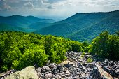stock photo of virginia  - View of the Blue Ridge Mountains from Blackrock Summit in Shenandoah National Park Virginia - JPG
