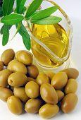 Постер, плакат: Оливки и оливковое масло