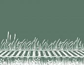 Editable vector illustration of grassy railway tracks
