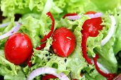Closeup of a fresh green salad, with curly coral lettuce, tiny grape tomatoes, spanish onions, red chili, and a balsamic dressing.