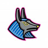 Mascot Icon Illustration Of Head Of Anubis, An Ancient Egyptian Animal God Of Afterlife Depicted As  poster