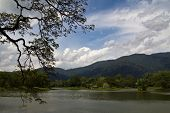 lake garden panoramic view II