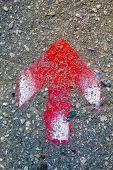 Red Arrow On Asphalt