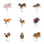 Domesticated Animal Icons Set. Isometric Set Of 9 Domesticated Animal Vector Icons For Web Isolated  poster