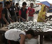 SABAH, MALAYSIA - SEPT 10: Traders and fish mongers view the morning catch at the fish market in Semporna town on September 10, 2011 in Sabah, Malaysia. Seafood and fishery is a major industry here.