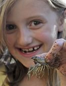 A Little Girl Holds Up A Crayfish
