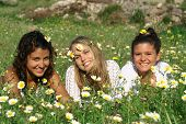 Beautiful Girls Relaxing In Meadow