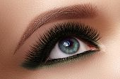 Beautiful Macro Shot Of Female Eye With Extreme Long Eyelashes And Black Liner Makeup. Perfect Shape poster