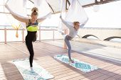 Healthy And Fly Yoga Concept poster