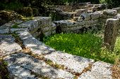 Building Ruins With Beautiful Plants Growing. Beautiful Warm Spring Day And Archeological Ruins At B poster