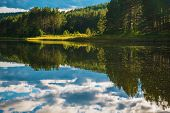 Calm Scenic Norwegian Lake. Summer In The Scandinavia. poster