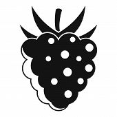 Delicious Raspberry Icon. Simple Illustration Of Delicious Raspberry Vector Icon For Web Design Isol poster
