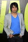 LOS ANGELES - JUN 25:  Vic Sahay arrives at the