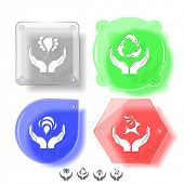 Animal icon set. Protection nature, deer in hands, bird in hands, bee in hands.  Glass buttons. Vect