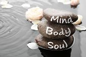 Spa Stones With Words Mind, Body, Soul And Rose Petals In Water, Space For Text. Zen Lifestyle poster