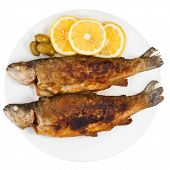 picture of brook trout  - top view of fried river trout fish on plate isolated on white background - JPG