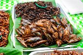 stock photo of locusts  - Thai food at market - JPG