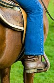 picture of gaucho  - close up on a shouth american gaucho boot - JPG