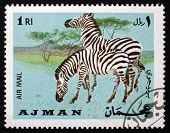 Postage Stamp Ajman 1969 Plains Zebra, Equus Quagga, Animal